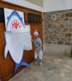 1. Préparation disposition des épreuves _ le requin-2